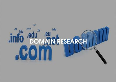 ServiceIcons-Domain-Research